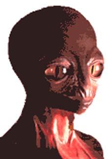 Alien Reptoid type picture